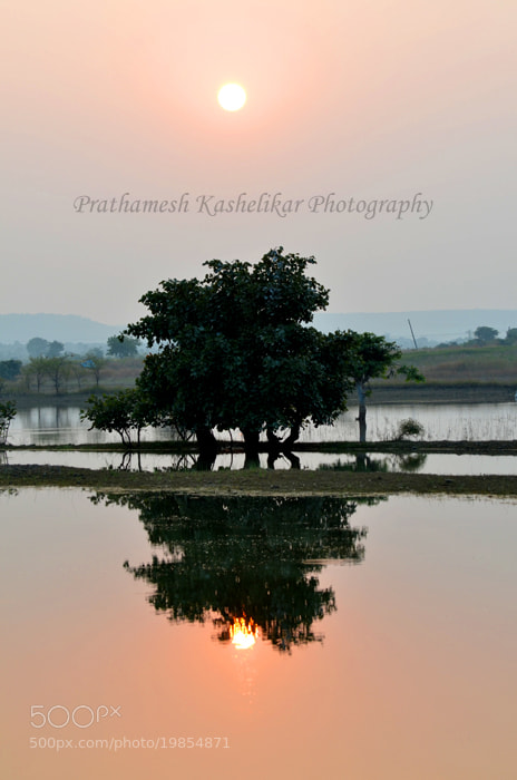 Photograph Reality Vs. Reflection by Prathamesh Kashelikar on 500px