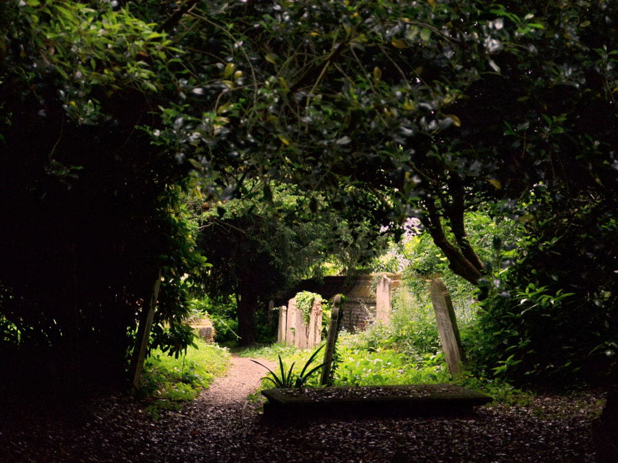 St John-at-Hampstead Cemetery, London by Sandra on 500px.com