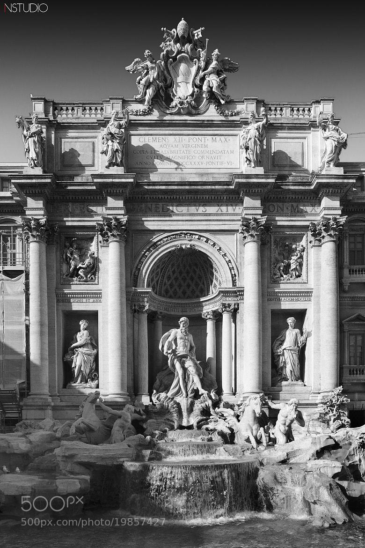 Photograph Rome - Fontana di Trevi by NSTUDIO PHOTO on 500px