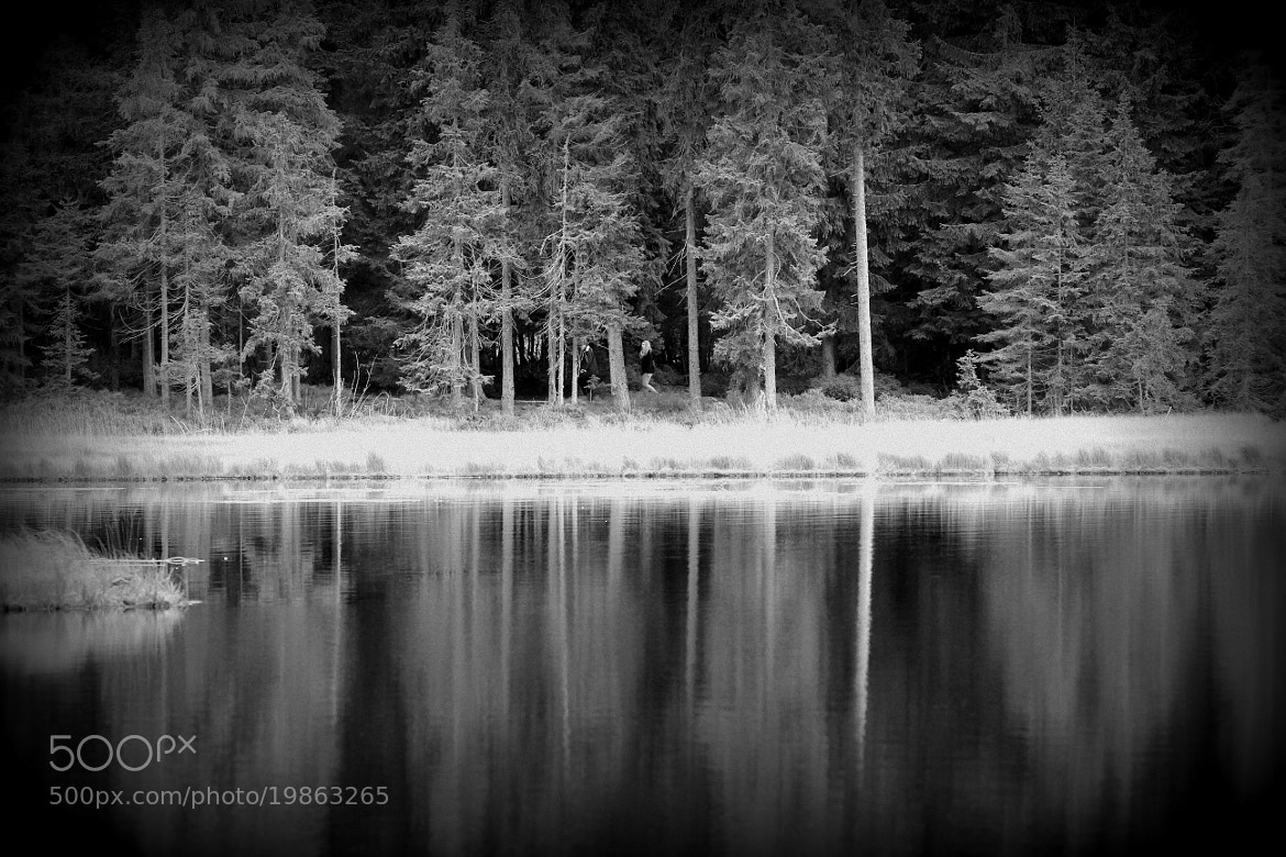 Photograph Arbersee by Julia H on 500px
