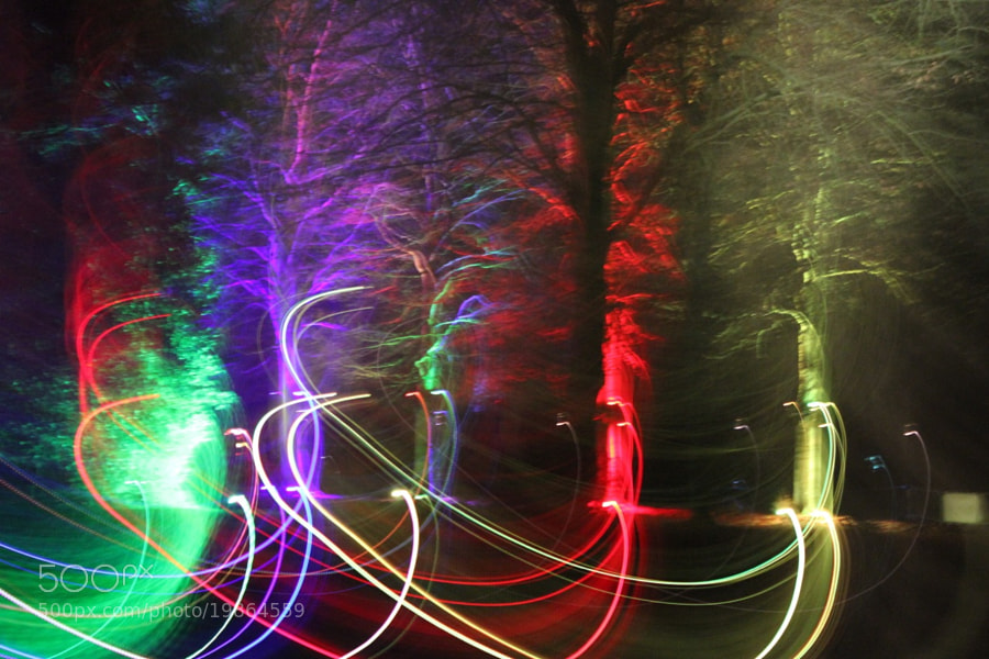 The Electric Forest by Alexandre Roty (AlexRoty)) on 500px.com
