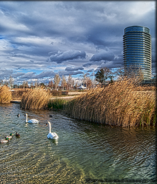 Photograph Zaragoza by Valentina Alexe on 500px