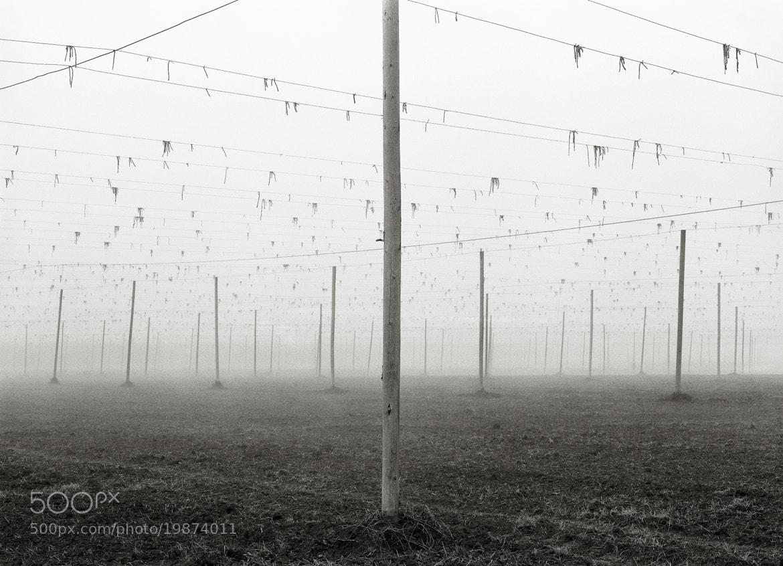 Photograph Fallow Field, Oregon by Austin Granger on 500px