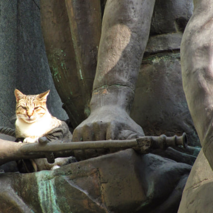 Cat on a statue, Canon POWERSHOT SX120 IS