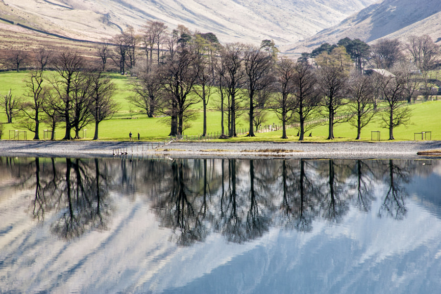 Buttermere trees reflections