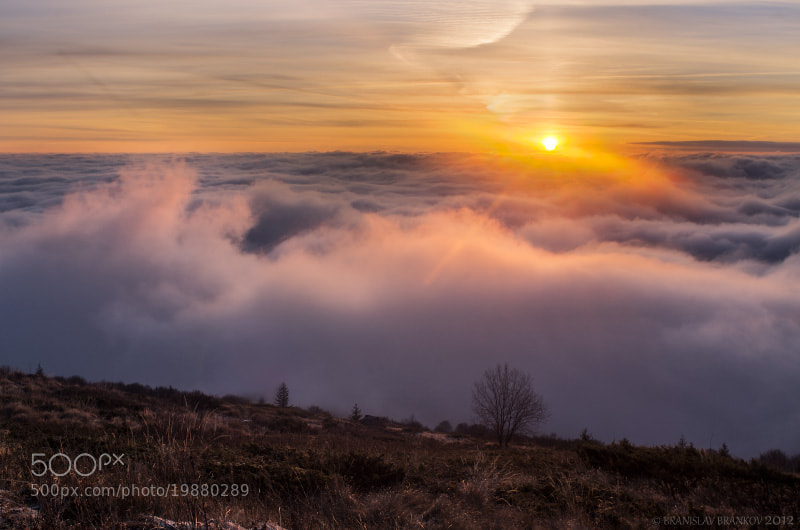 Photograph Sunrise over the the sea of clouds by Branislav Brankov on 500px