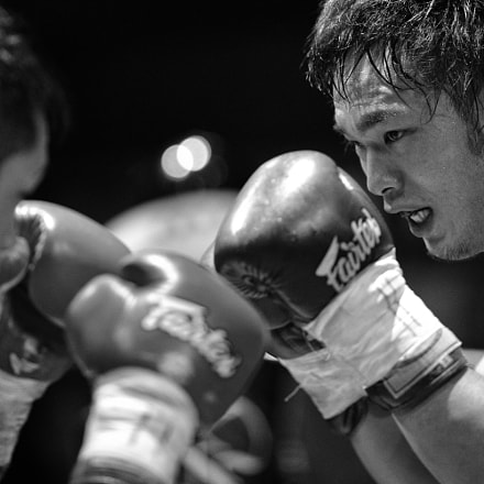 fight, Canon EOS-1D X MARK II, Canon EF 200mm f/2L IS