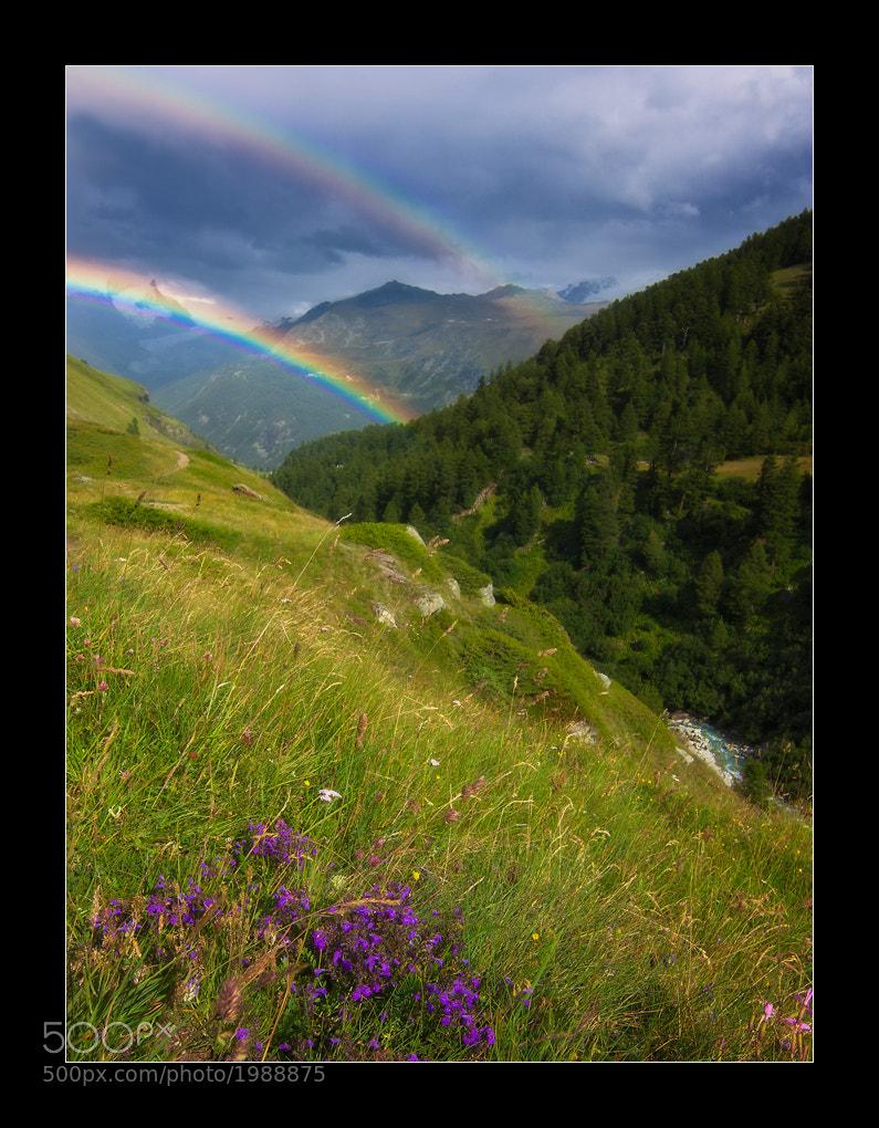 Photograph Alpine Dreams by David Richter on 500px