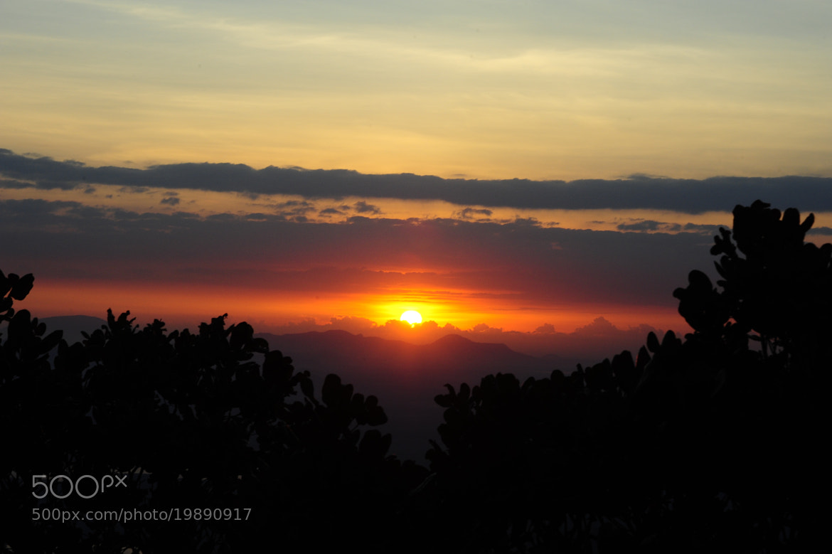 Photograph The Dawn by Ha Hieu on 500px
