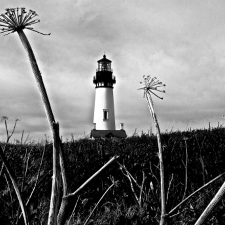 Yaquina Head Lighthouse, Pentax K-5, smc PENTAX-DA 16-45mm F4 ED AL