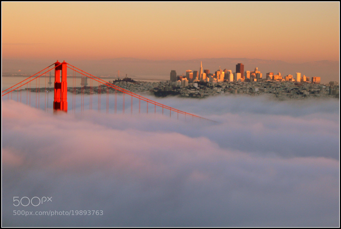 Photograph North Tower of The Golden Gate Bridge by Martin Rosen on 500px