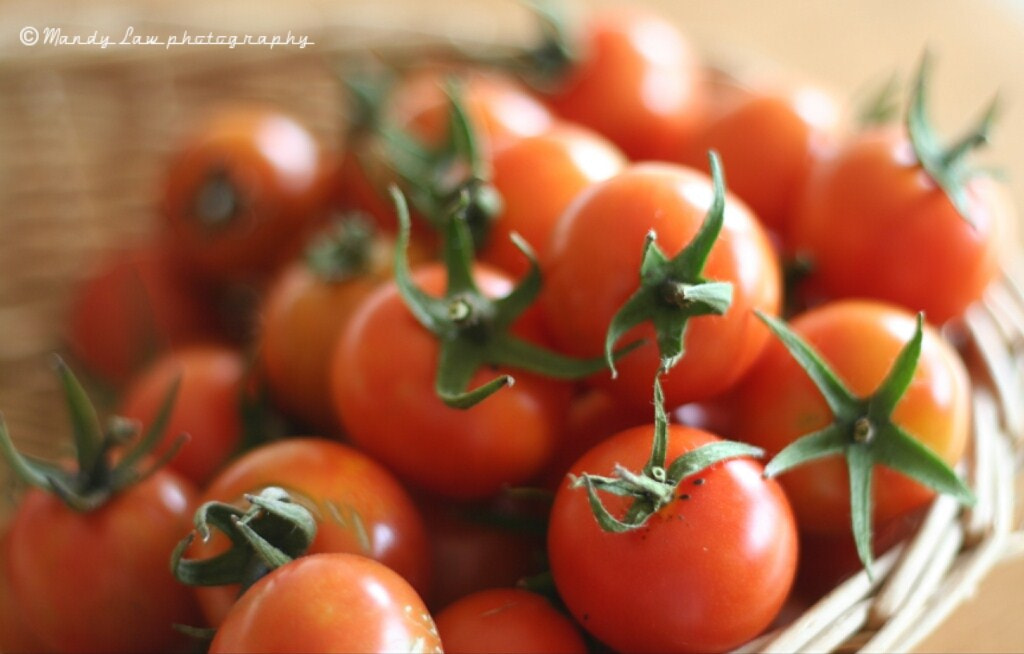Photograph Fresh tomatoes by Mandy Law on 500px