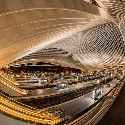 Station Liège-Guillemins, Canon EOS 5D MARK III, Sigma 15mm f/2.8 EX Fisheye