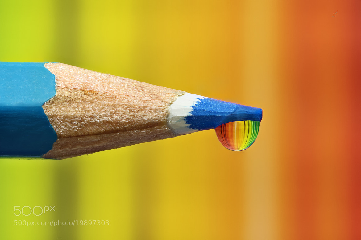 Photograph Focus stacking by Yuval Vaknin on 500px