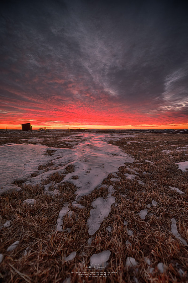 Wascana Dawn by Ian McGregor on 500px.com