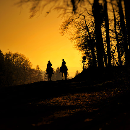 Horseriding into the sunset