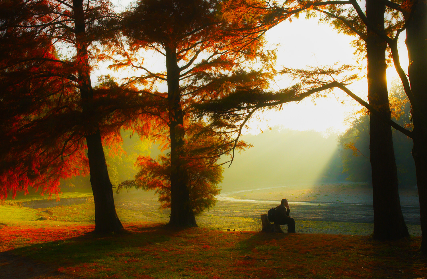 Photograph take a rest by Andy 58 on 500px