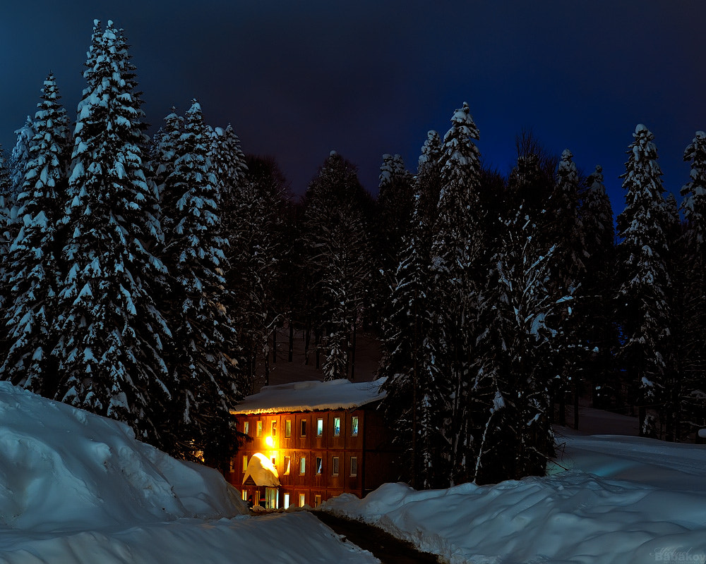 Photograph In a night winter forest by Michael Babakov on 500px