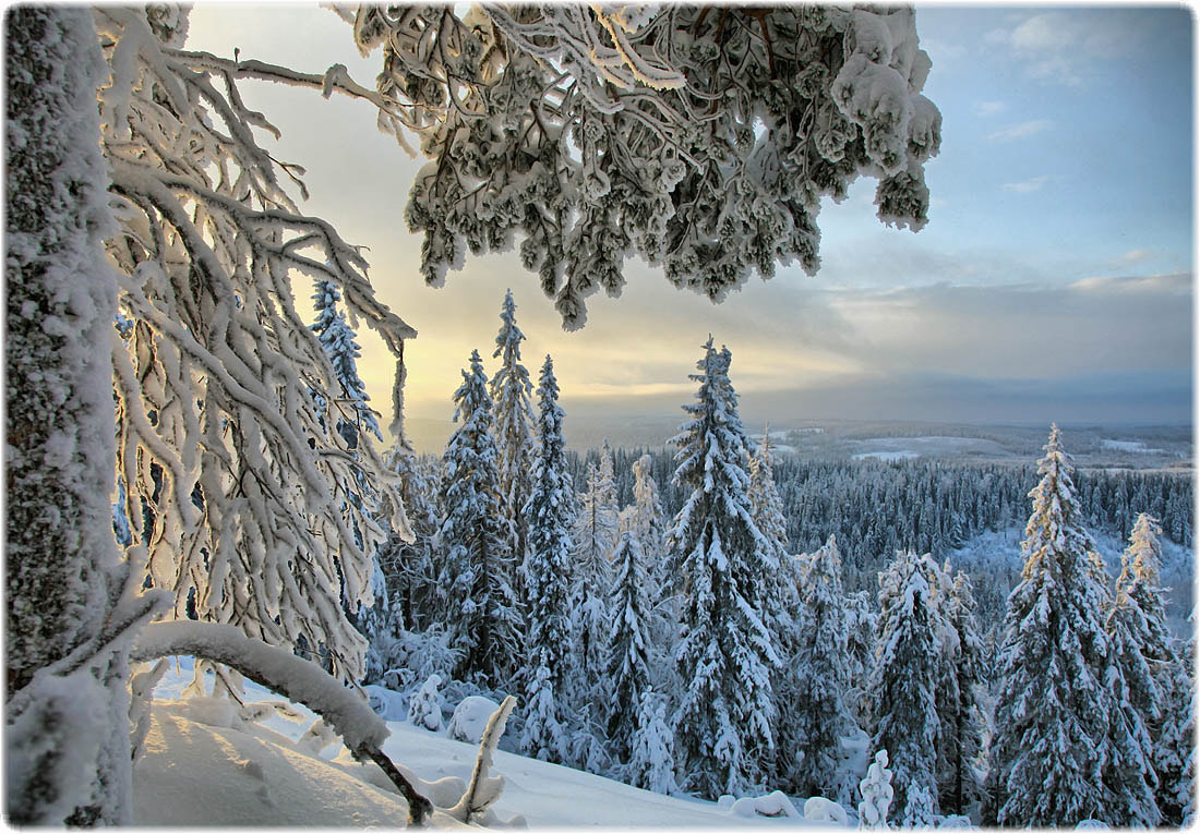 Photograph Frosty morning ... by Valtteri Mulkahainen on 500px
