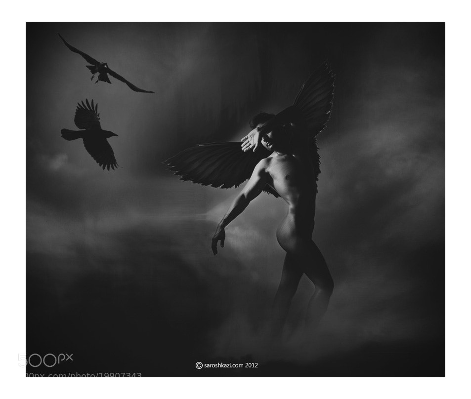 Photograph The Bird by Sarosh Kazi on 500px
