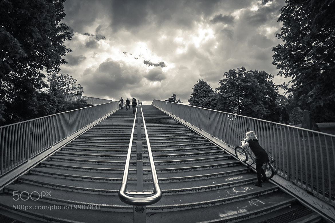 Photograph Stairway to heaven by Michel  Saive on 500px