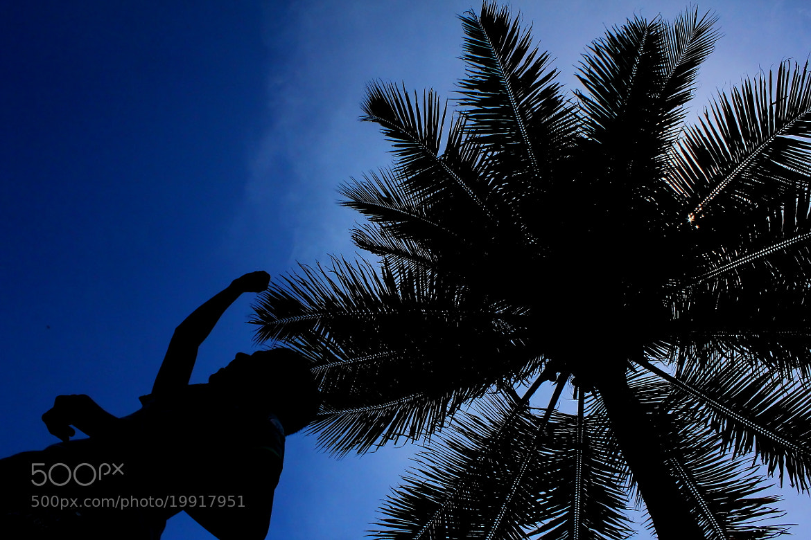 Photograph In Harmony by Robins Mathew on 500px