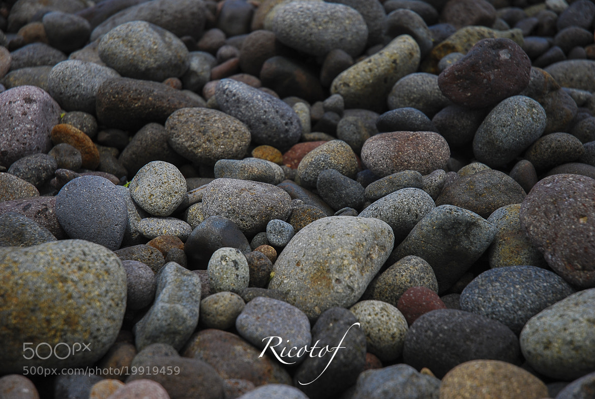 Photograph Untitled by RicoPhotography  on 500px