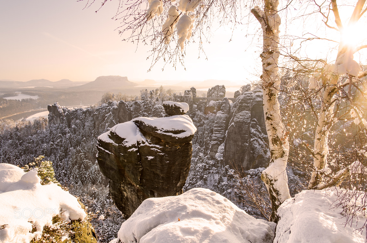 Photograph Winter in the Saxony Switzerland by Rico Richter on 500px