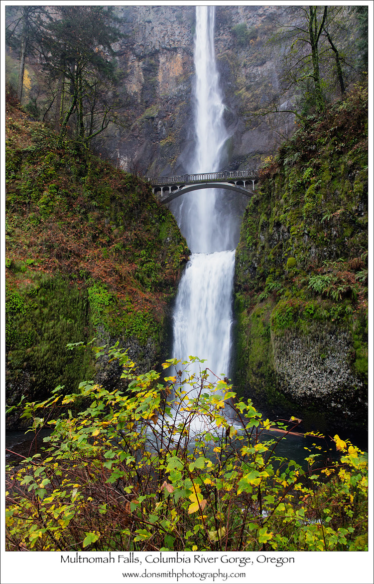Photograph Multnomah Falls, Columbia River Gorge by Don Smith on 500px
