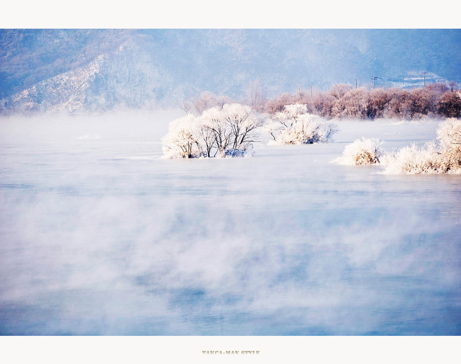 Photograph Untitled by son yang seoung on 500px