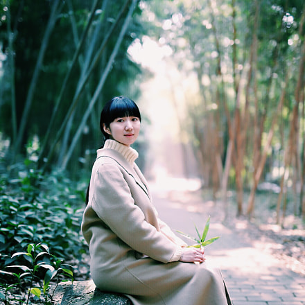 Quiet bamboo., Canon EOS 6D, Canon EF 35mm f/1.4L USM