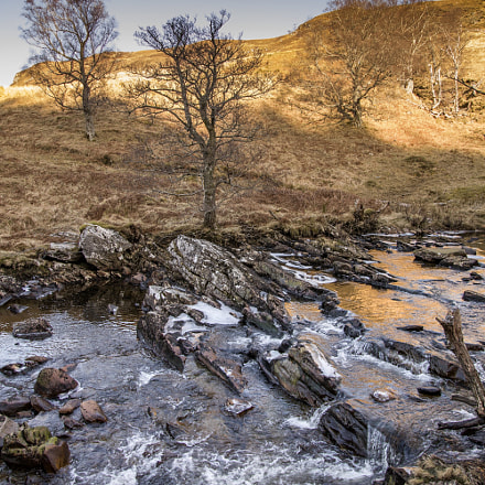 Somewhere in scotland, Canon EOS 5DS, Sigma 24-105mm f/4 DG OS HSM | A