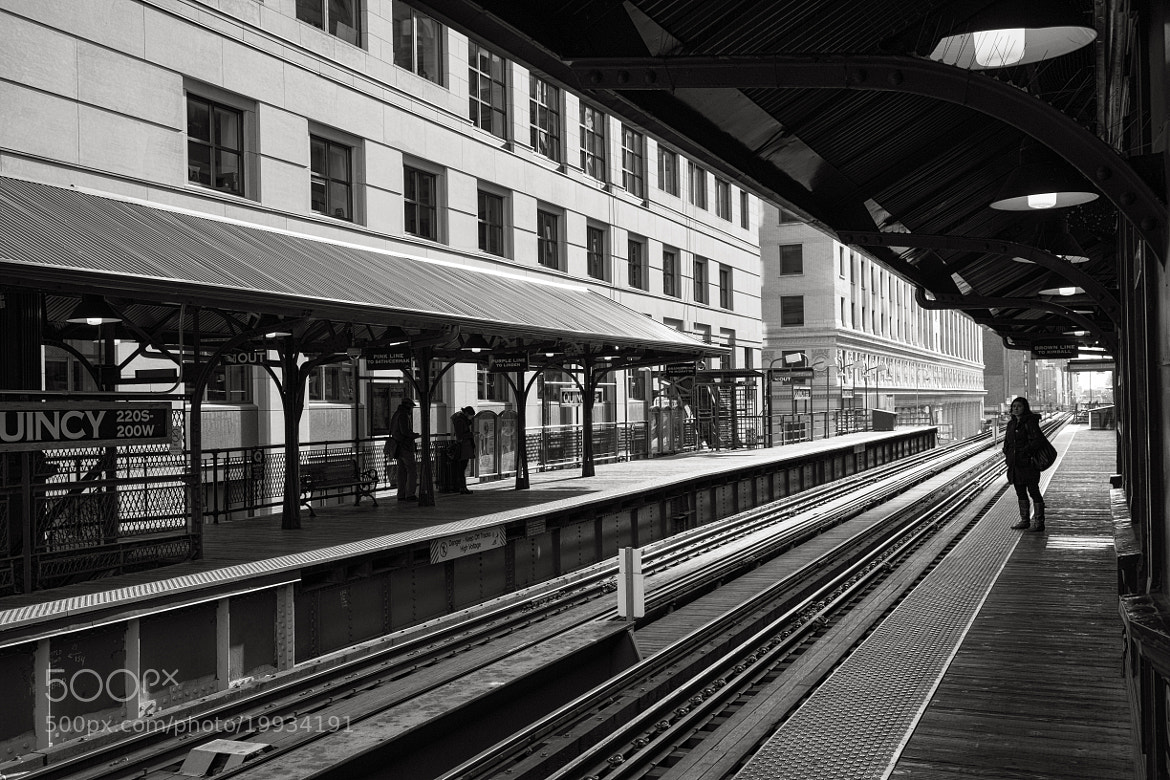 Photograph Brown Line by Jonathan Robson on 500px