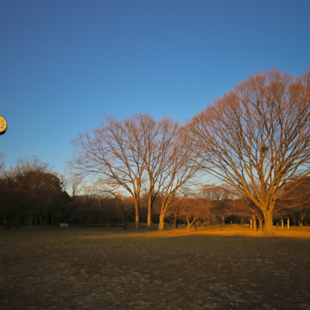 It's sunset time, Canon EOS 6D, Canon EF 16-35mm f/4L IS USM