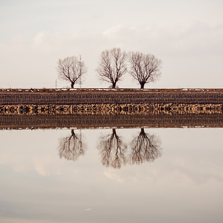 reflection, Canon EOS 60D, Sigma 30mm f/1.4 EX DC HSM