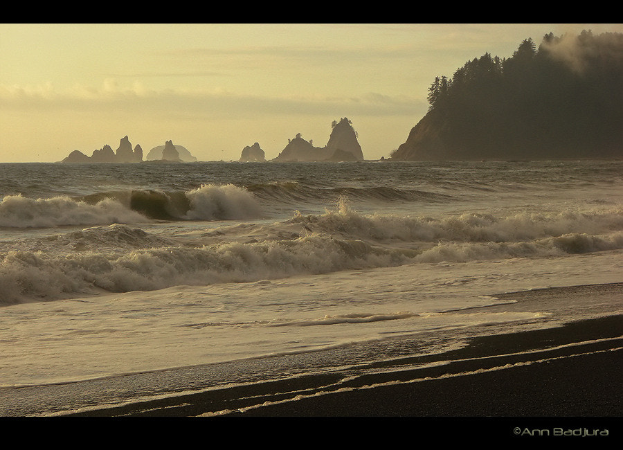 Photograph Wild waves by Ann Badjura on 500px