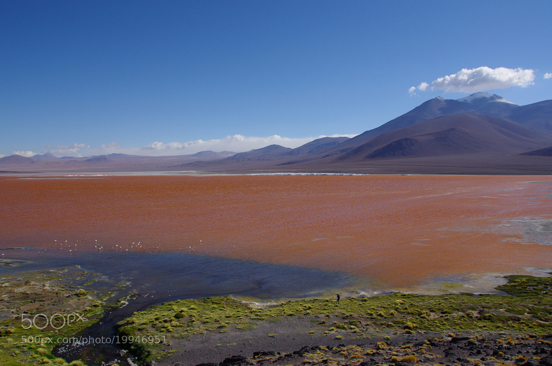 Photograph Laguna Colorada by Gilles Le Drian on 500px