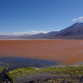 Laguna Colorada by Gilles Le Drian (ledriangil)) on 500px.com
