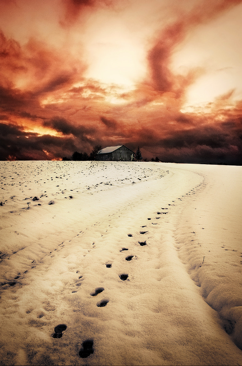 Photograph Leaving Traces in the Snow by NICOLAI BÖNIG on 500px