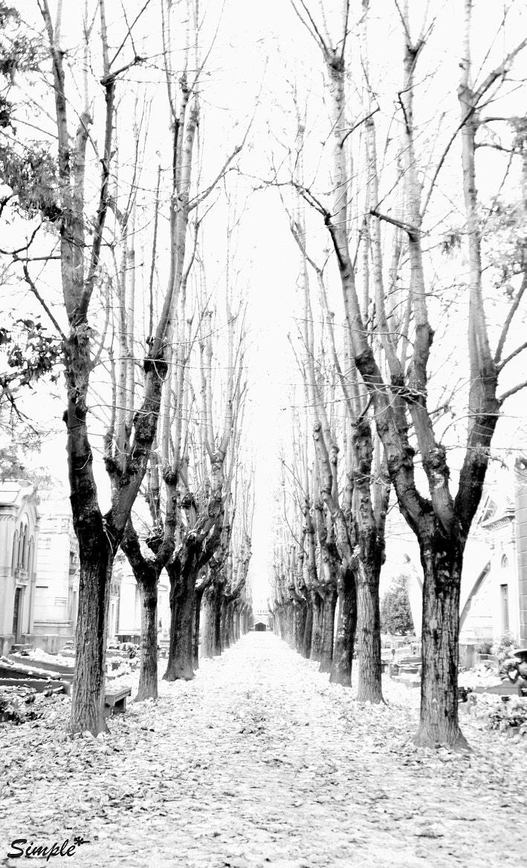 Photograph Tutta un'altra realtà. by Barbara Fattizzo on 500px