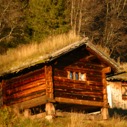 old cabin in Norway, Canon EOS D60