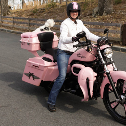 Pink motorcycle, Canon EOS REBEL T5I, Canon TS-E 90mm f/2.8