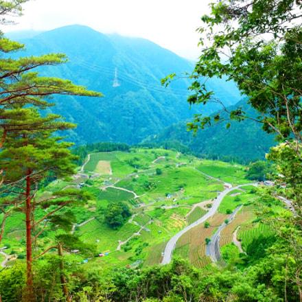 Japanese Machu Picchu