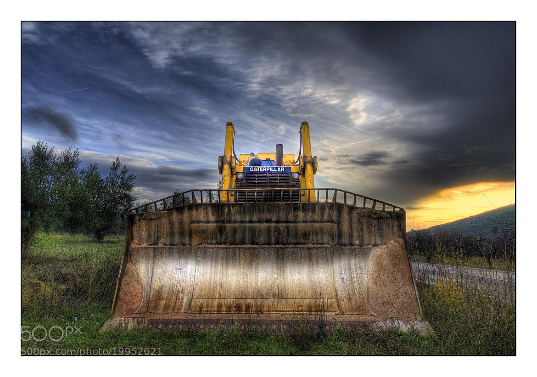 Photograph Caterpillar by Paco  Zaragoza on 500px