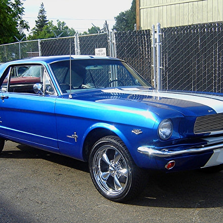 1966 FORD MUSTANG, Sony DSC-S90