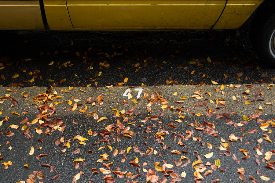 Pickup,street, curb, leaves, number in Olympia, Washington.