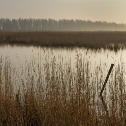 Tranquility, Canon EOS 60D, Canon EF-S 15-85mm f/3.5-5.6 IS USM