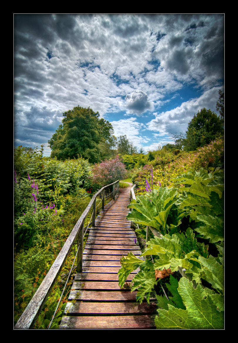 Photograph Bridge and path, Furzey gardens by Chris Spracklen on 500px