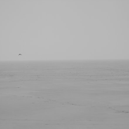 The frozen baltic sea, Canon EOS 7D, Canon EF 24-70mm f/4L IS USM