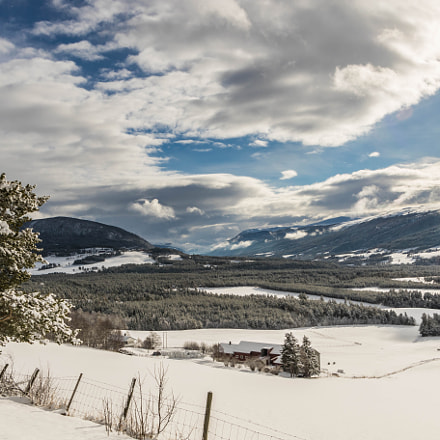 After snow came this, Canon EOS 7D MARK II, Canon EF-S 17-55mm f/2.8 IS USM